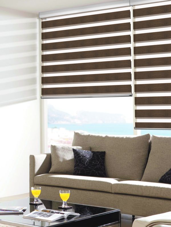 blinds night and day for living room